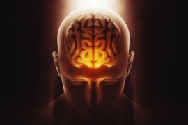 la mente umana sottoposta ai social