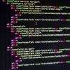 Copertina della categoria programmazione - schermo nero con codice java